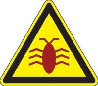 Identifying Malware